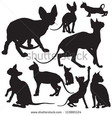 sphynx cat cartoon - Google Search