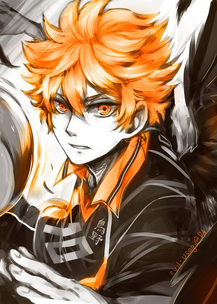 Haikyuu Shouyou Hinata by Evilusagi on DeviantArt