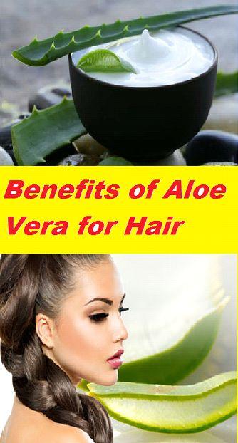 Amazing Benefits of Aloe Vera for Hair #Healthylife #healthlifestyle