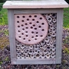 Solitary Bee Box