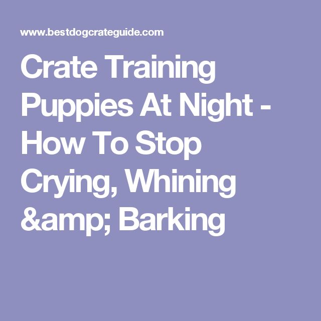 Crate Training Puppies At Night - How To Stop Crying, Whining & Barking