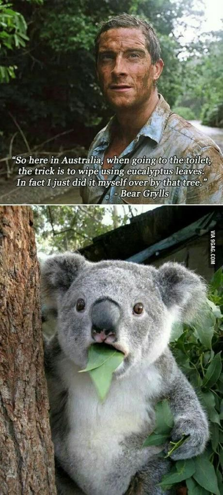 If you are ever in Australia | #lol #funny #humor