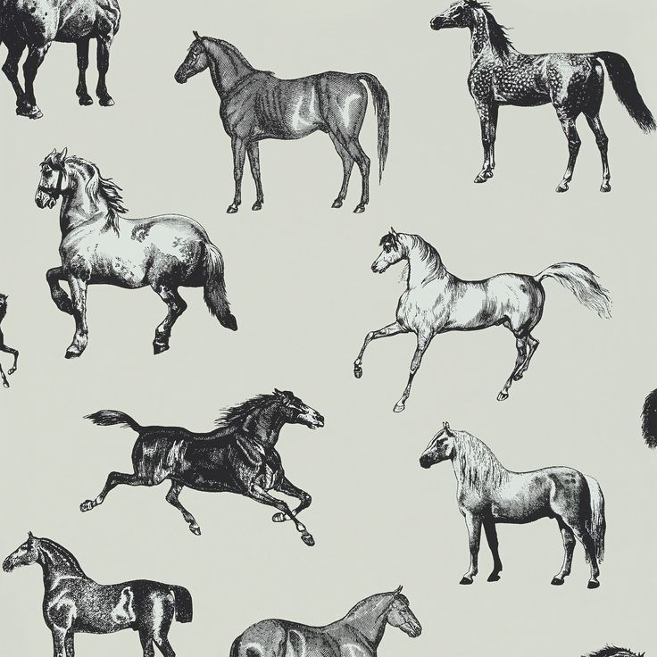 Colette Black | Sandberg - The beautiful horses of our popular Collette wallpaper feature a modern graphic tone that looks good in a city apartment, as well as a country manor.