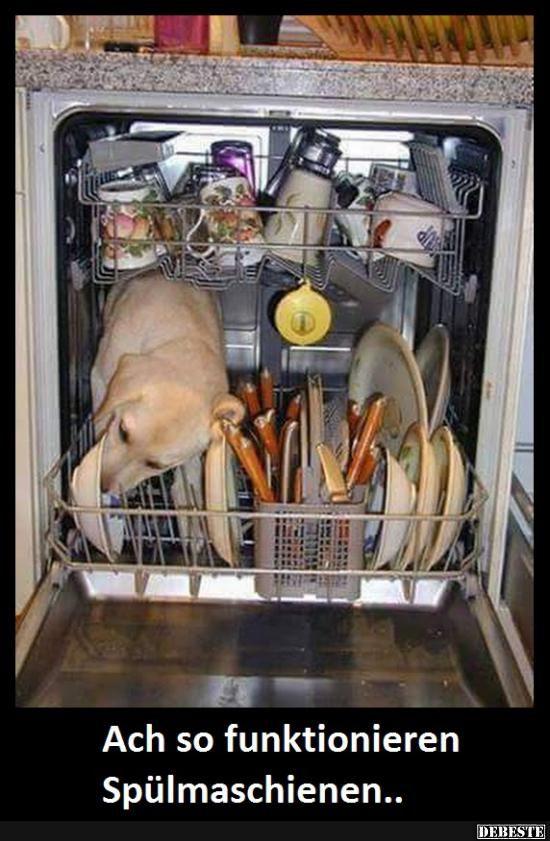 Ach so funktionieren Spülmaschienen.. | Lustige Bilder, Sprüche, Witze, echt lustig