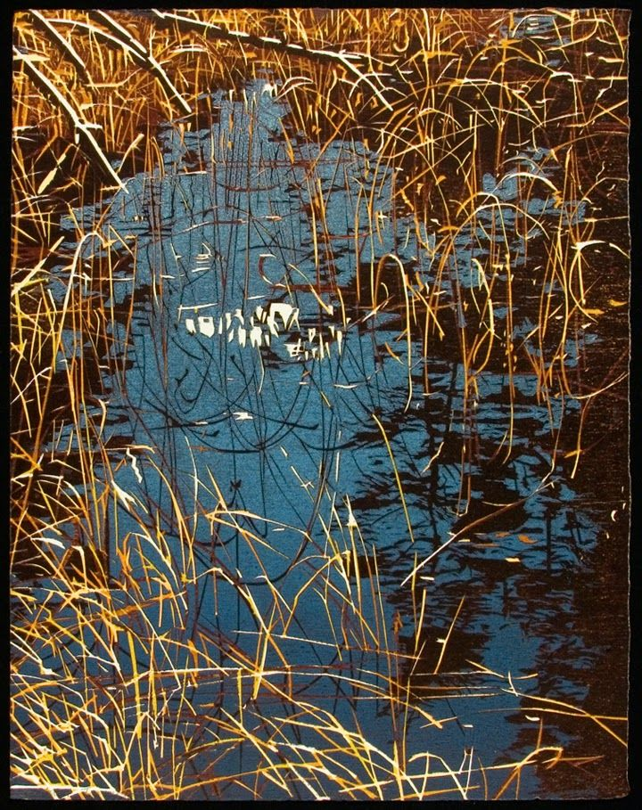 "Jean Gumpper: Woodcuts; Northern Waterscapes, Scattered Tracings, 20""x 16"", Woodcut"
