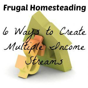 6 Different income streams you can start today, post at www.pintsizefarm.com