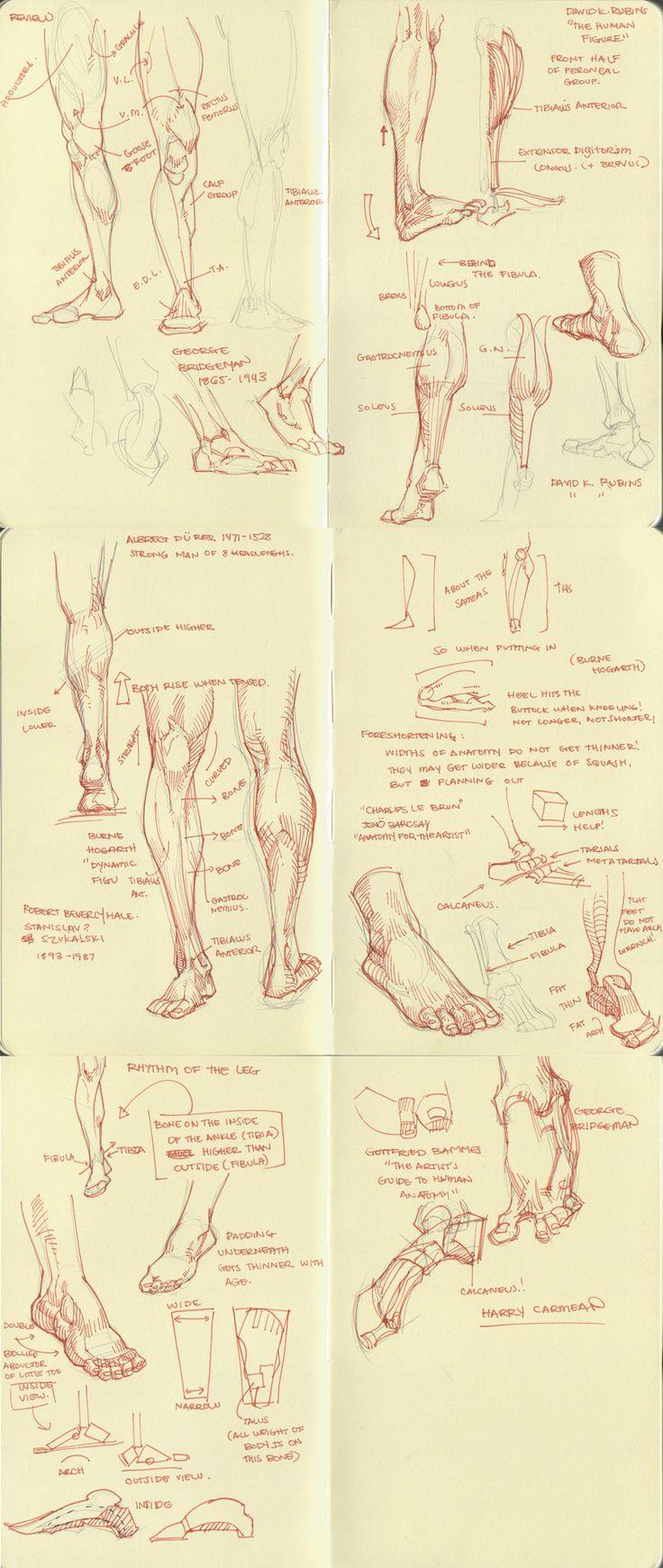 pé perna