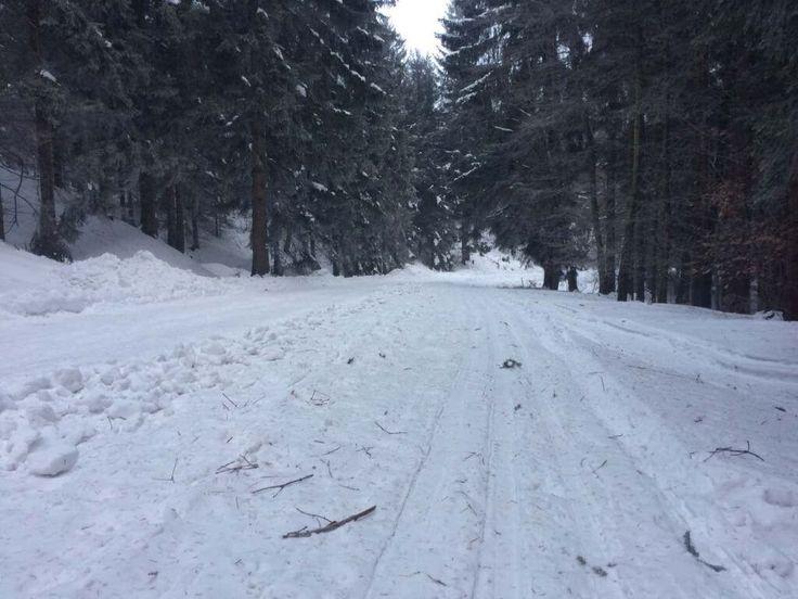 odkryj wałbrzych- trasy biegowe- Głuszyca Górna