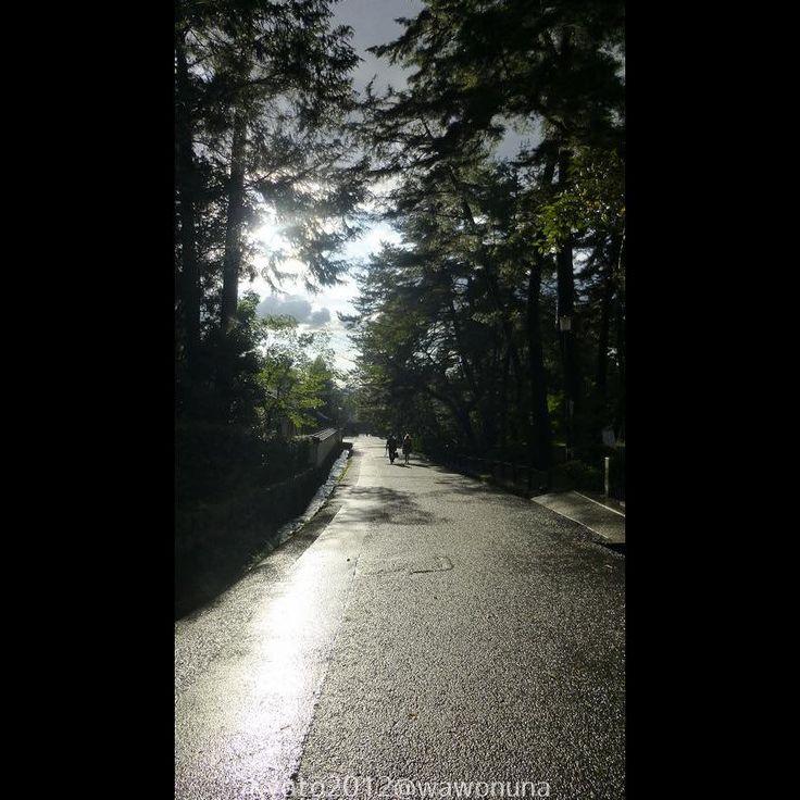 Kyoto2012 Nanzenji Sandō #kyoto #paisaje #japon #templo #nanzenji #sando #camino