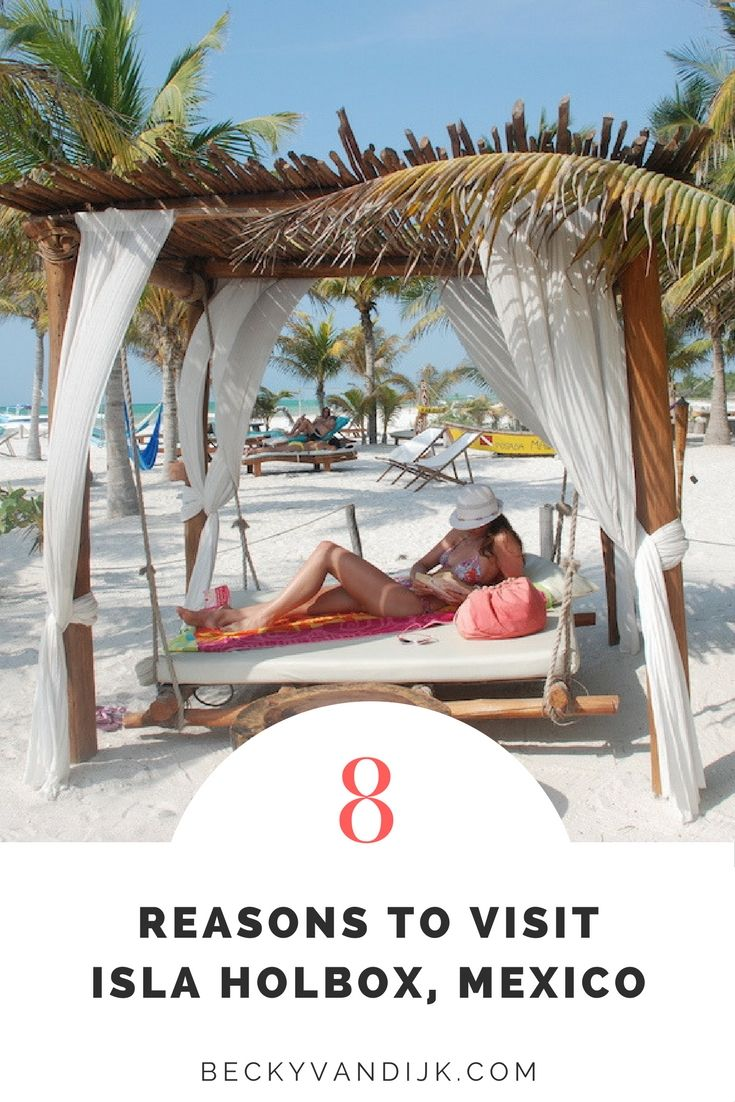 8 Reasons To Visit Isla Holbox, Mexico - Isla Holbox is located on the northern tip of the Yucatan Peninsula in Mexico. I visited here several years ago when there were just a handful of hotel options, a couple of restaurants and no hostels, but travellers were here to see the main attraction – whale sharks. So why should you go? Here are 8 reasons why you should pack your bags and head to this tropical island in 2017!
