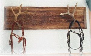 Antler bridle rack! OMG yes, my whole tack room in my dream barn shall have tons of these :)