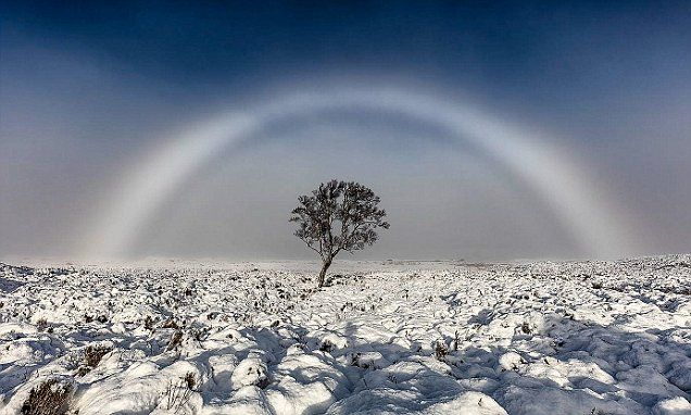 A stunning image of a rare fog bow was captured by photographer Melvin Nicholson over the snow-covered Scottish Rannoch Moor on Sunday, November 20th, 2016, A fog bow is a colorless rainbow made up of tiny water droplets that cause fog. Due to the small size of the water droplets it has very weak colors, with a red outer edge and bluish inner edge.