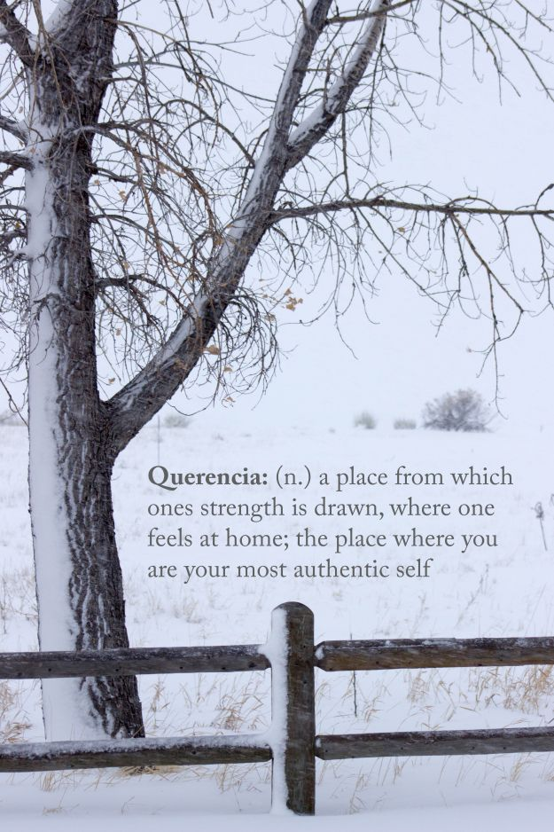 2037 best words images on Pinterest Beautiful words, Education - synonym for presume
