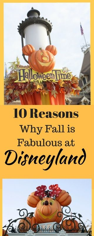 Find out what is fabulous about Disneyland in the fall and why you should visit.