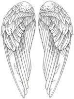 Картинки по запросу Крылья ангела