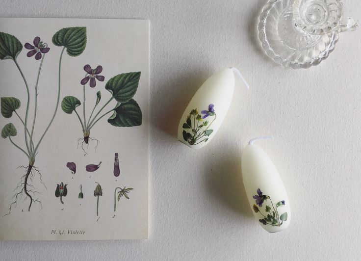 野花のろうそく #candle #蜜蝋 #押し花 #新月の夜のろうそく会 #rousoku