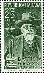 Battista Grassi