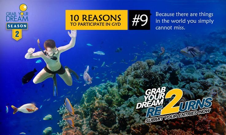 From the depths of the sea to mysteries of the hills, surprises await! Participate now: http://cnk.com/participategyd2
