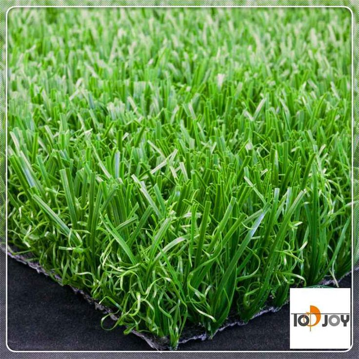 best grass for soccer fields in Pakistan  Image of best grass for soccer fields in PakistanQualified best grass for soccer fields in Pakistan goods with China provider pertaining to overseas plus local commerce company.Being the most reliable products individuals manufacturing area.  More: https://www.turf8.com/SportArtificialGrass/best-grass-for-soccer-fields-in-pakistan.html