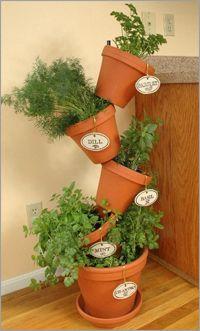 DIY : placez les pots sur une barre et Cultivez vos plantes aromatiques dans un petit espace