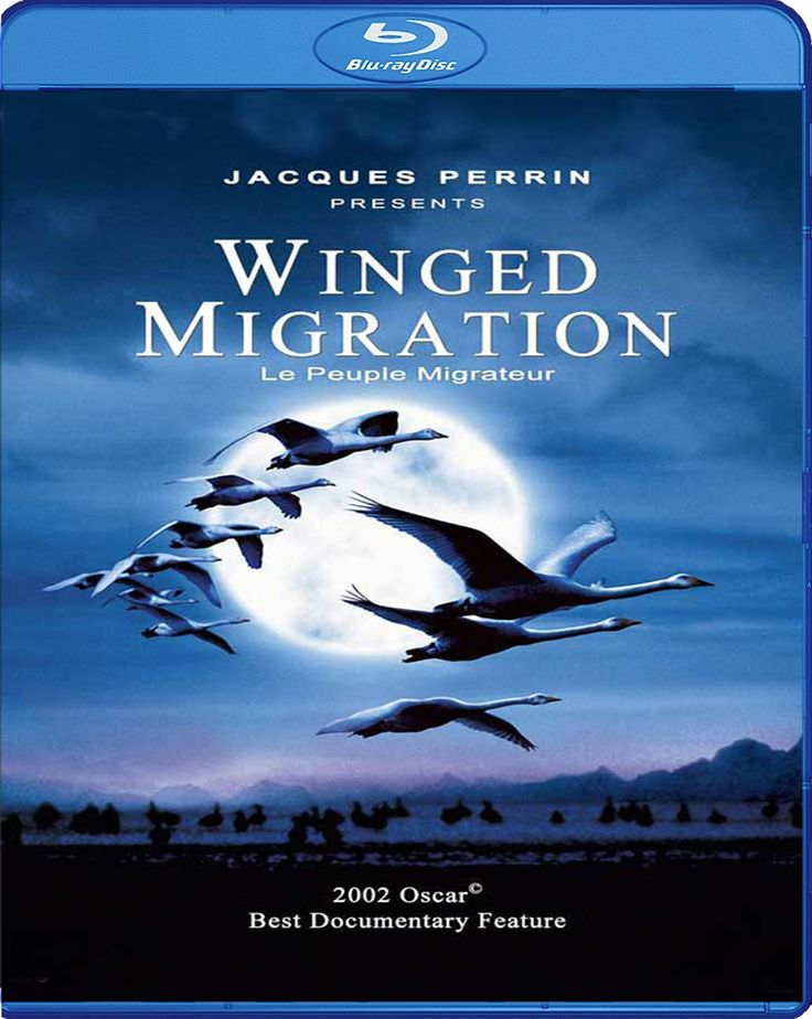 Winged Migration - Kanatlı Uygarlık [2001] Blu-ray Cover