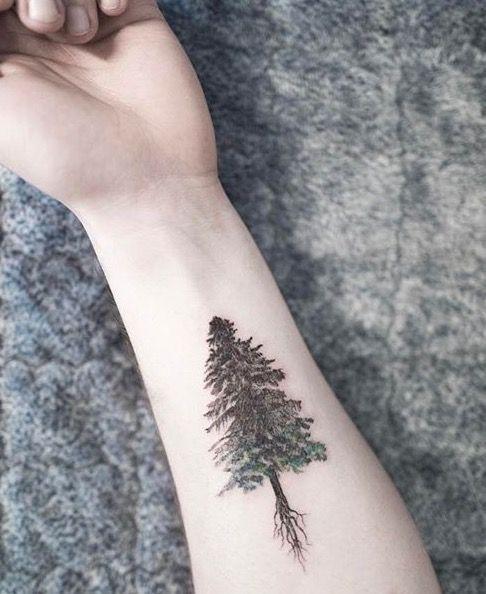 Black evergreen tree tattoo.