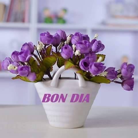 Bon dia bon dia bona tarda bona nit pinterest - Fotos jarrones con flores ...