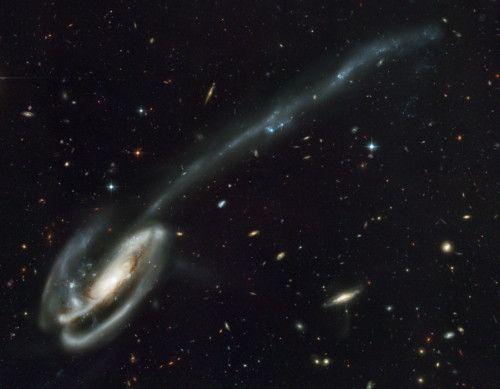 Arp 188 y la Cola Gravitacional del Renacuajo ¿Por qué esta galaxia tiene una cola tan larga? En esta vista imponente, registrada con la Cámara Avanzada para Sondeos (ACS) del Telescopio Espacial Hubble, numerosas y lejanas galaxias forman un magnífico segundo plano para la galaxia espiral deformada Arp 188, la Galaxia del Renacuajo. Este renacuajo cósmico se encuentra a no más de 420 millones de años luz en la constelación septentrional del Dragón. Su cola, la parte de la galaxia que más…