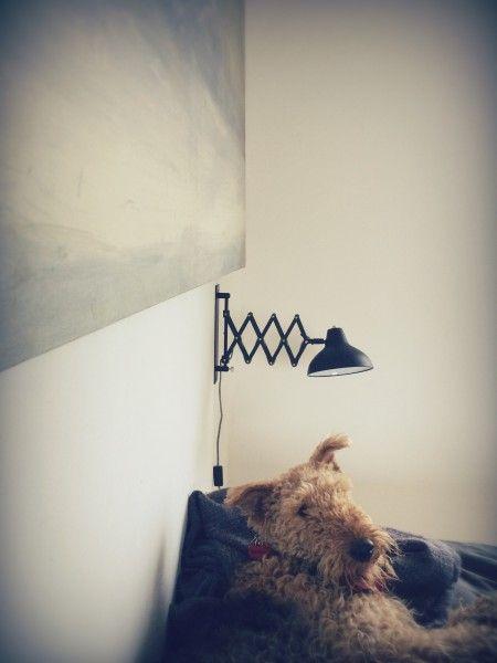 Frosini Wandlampe in Schwarz ► Entdecke moderne Designmöbel jetzt bei MADE.
