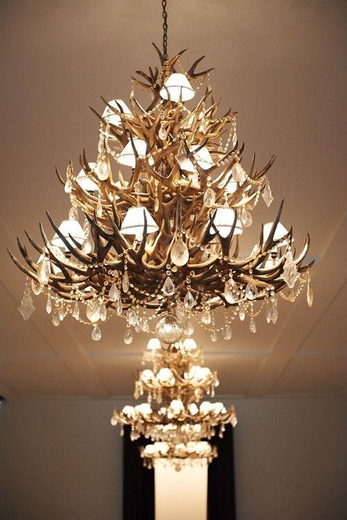 Antler Foyer Lighting : Best antler christmas trees images on pinterest