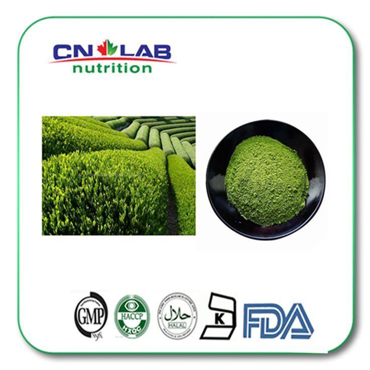 High Quality Organic Matcha Green Tea Extract Powder Egcg 45% Price Per Kg #Affi
