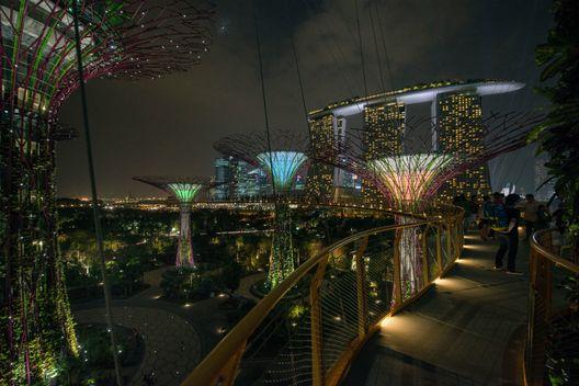Projeto de iluminação: estratégias lumínicas em Garden by the bay por Lighting Planners Associates