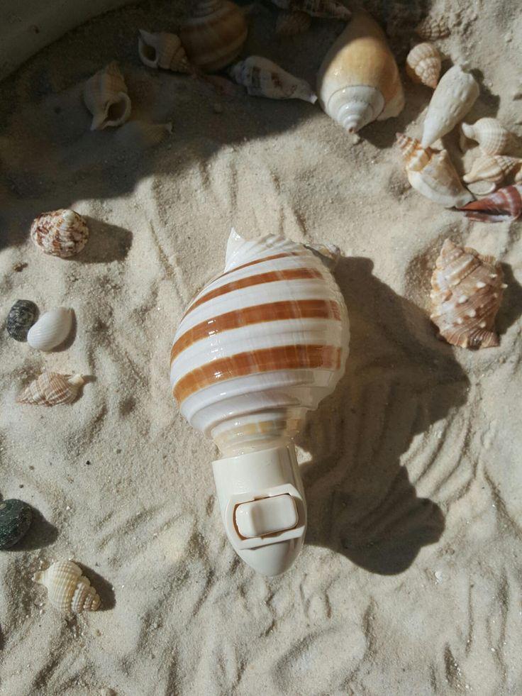 Natural Shell Nightlight,  Shell Nightlight by BeachHomeDecor on Etsy