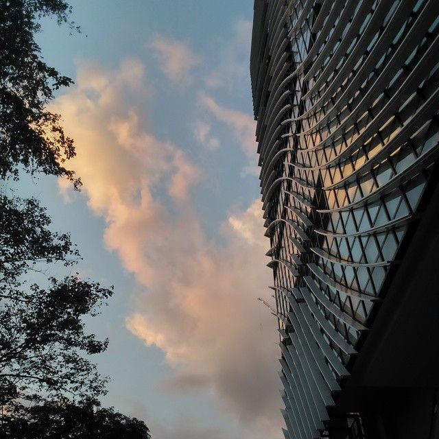 Henry Sy building in De La Salle University. // Took this with my Sony Xperia!! I miss Android phones.