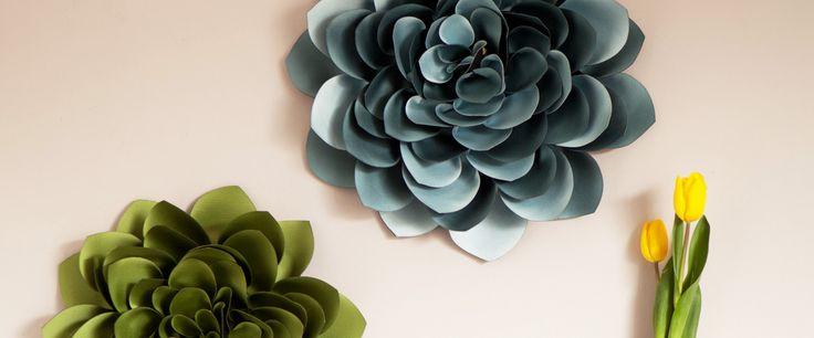 Wallflowers | Lorna Syson