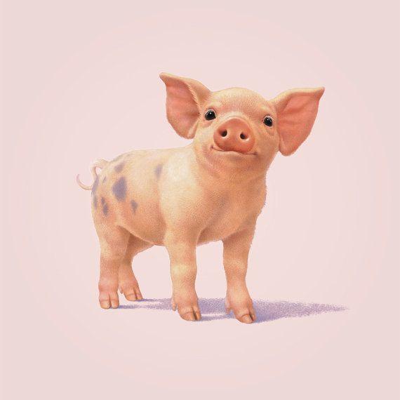 Illustrated Pig Print. £12.00, via Etsy.