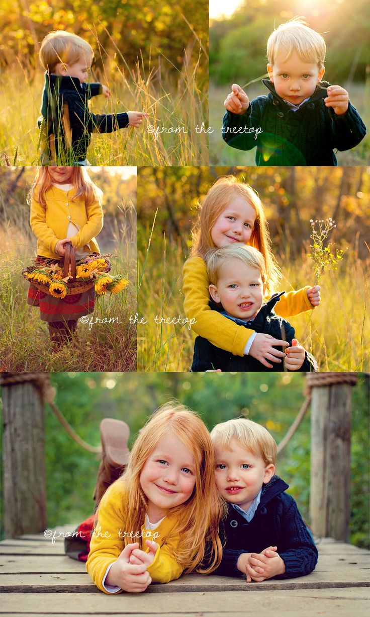 [hello yellow..…] dallas child photography » From the Treetop Photography