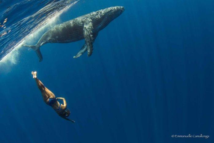 Quand une championne de natation synchronisée danse avec des baleines...