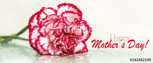 """Download the royalty-free photo """"happy mother's day"""" created by stillforstyle at the lowest price on Fotolia.com. Browse our cheap image bank online to find the perfect stock photo for your marketing projects!"""