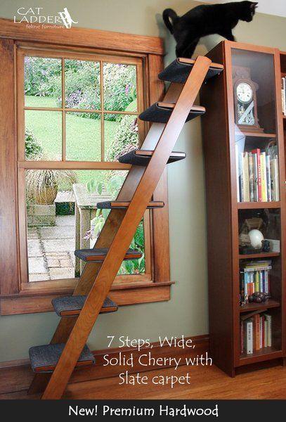 7 step ladders starting cat house cat paws cat furniture cat room rh pinterest com
