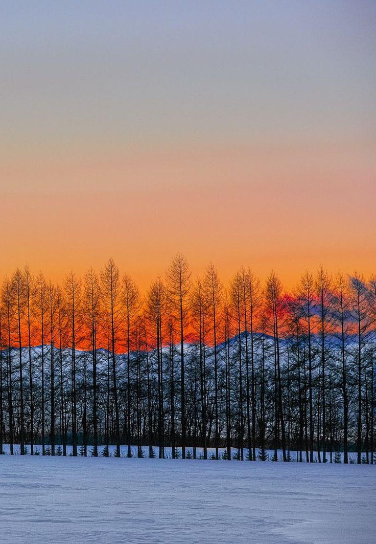 Winter sunset (Hokkaido, Japan) by Teruyuki Kameda / 500px