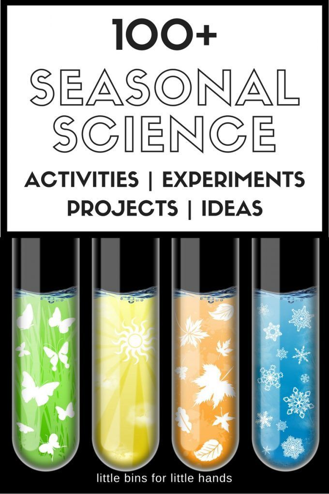 Awesome seasonal science experiments and seasonal STEM activities for kids all year round