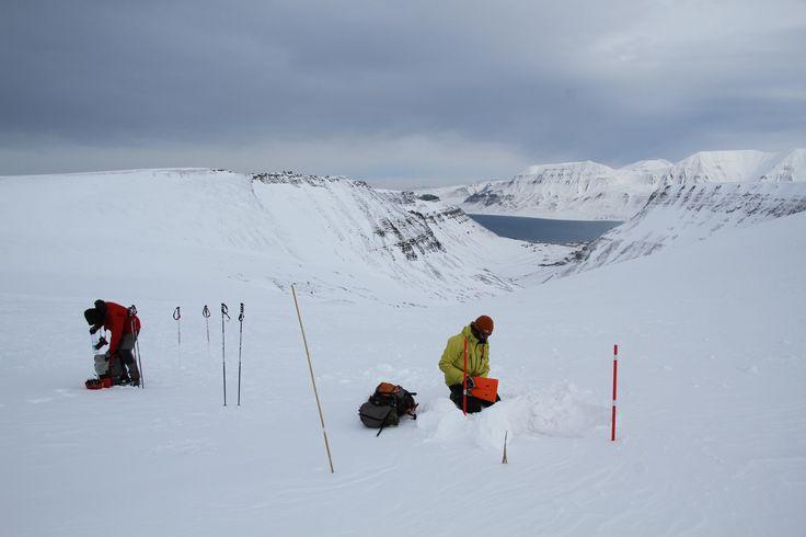 Domingo de Páscoa. 8.30 h da manhã. Esperamos a boleia da carrinha da Svalbard Wildlife Expeditions para um tour que aguardamos com expectativa, um trekking invernal. O nosso guia, Mirko, chega e, sorridente, apresenta-se. A coincidência da data religiosa (mais de festa nocturna por estes lados) faz com que sejamos os únicos a fazer a …