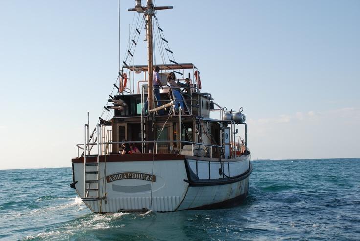 Angra Pequena off Durban, South Africa, 2008
