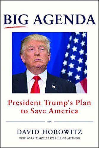 Big Agenda: President Trump's Plan to Save America