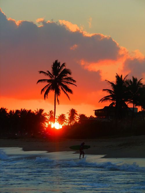 sunset and surfer on the beach= perfect end to a perfect day