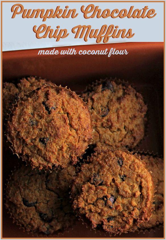 Coconut Flour Pumpkin Chocolate Chip Muffins #coconutflour #coconut #grainfree #dairyfree #glutenfree