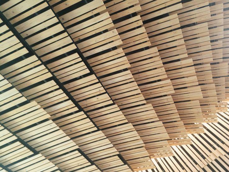 Wooden Ceiling in Tokyo Univ