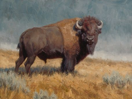 "Ryan Skidmore Wildlife Art ""The Plainsman"" 18 x 24 oil www.ryanskidmore.com"
