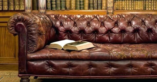 Leather Sofa Conditioner Homemade Ledercouch Sofa Echt Leder Sofa